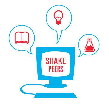 identité visuelle web shakers 4