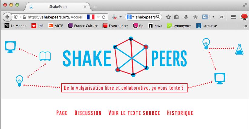 identité visuelle web shakers 2